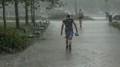Bouřky a déšť - 5
