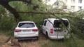 Následky bouřek - 2