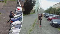 Mladík ničil zaparkovaná auta