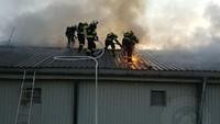 Požár drůbežárny