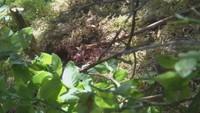 U slovenské obce Liptovská Lúžna našli mrtvého muže