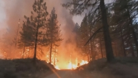 Požáry v USA
