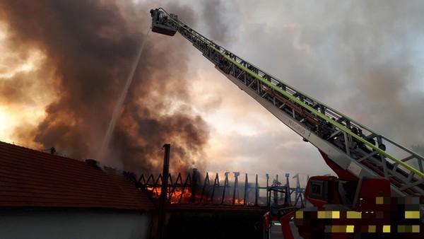 Majitel chtěl rozjet výrobu po karanténě, halu mu zničily plameny